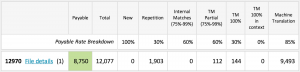 Analysis report in MateCat